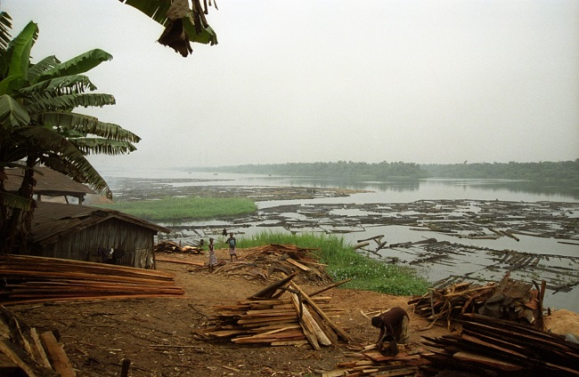 The rafts are dismantled in Sapele river port, one of the largest in Nigeria. Thousands of logs are waiting to go to the sawmill.