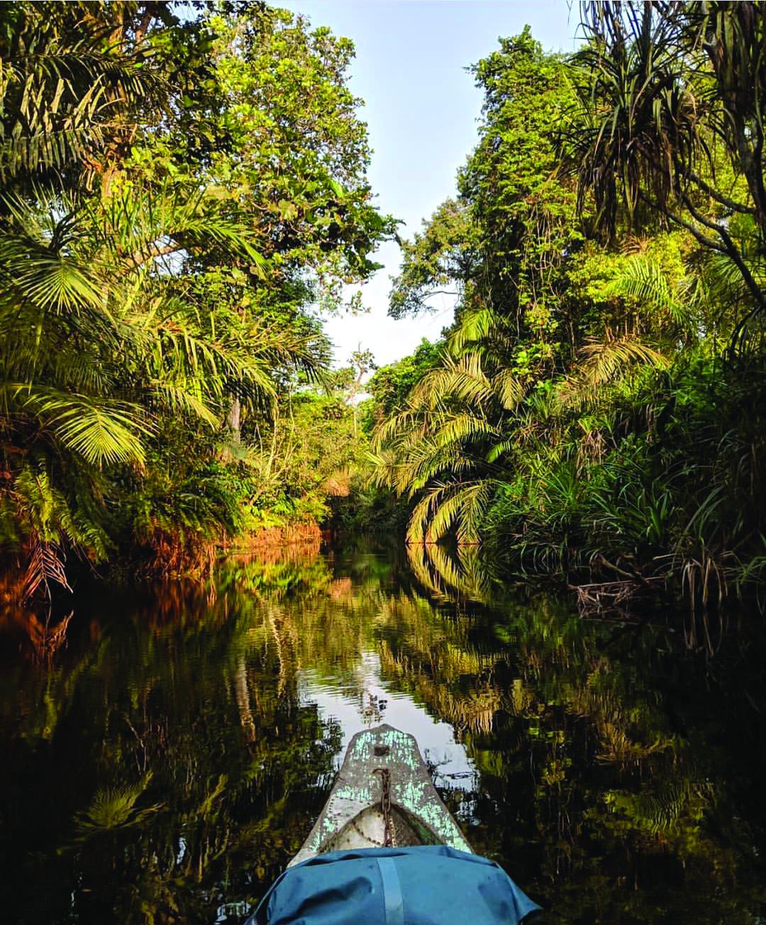 6h-du-matin-sur-le-fleuve-Mandoungoma-source-@ben_j_evans