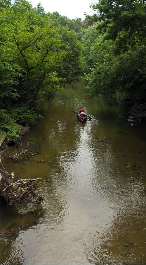 bronx-river-new-york