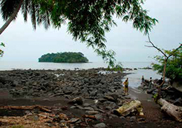 The small island, Nichols, where slave ships used to dock