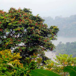 Bimbia est situé à 70 kilomètres à l'ouest de Douala