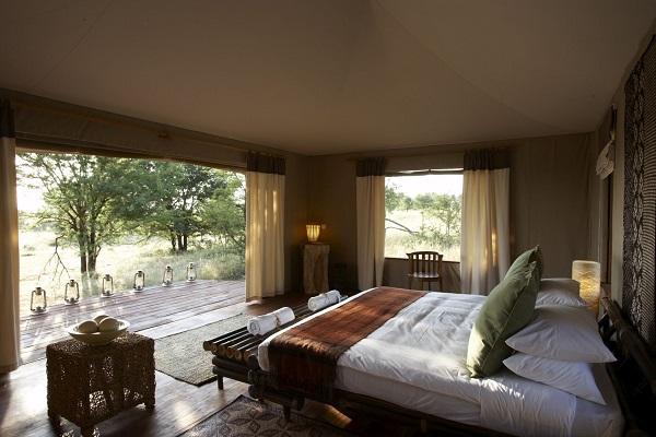 Room with a view at Sayari camp - Serengeti