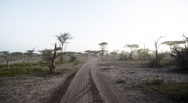 The landscape before the rains arrive in the Southern Serengeti