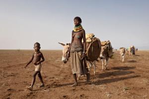 Les femmes, les enfants et les ‰anes migrent en bout de convoi, au milieu de la plaine aride qui longe les monts Mogila.