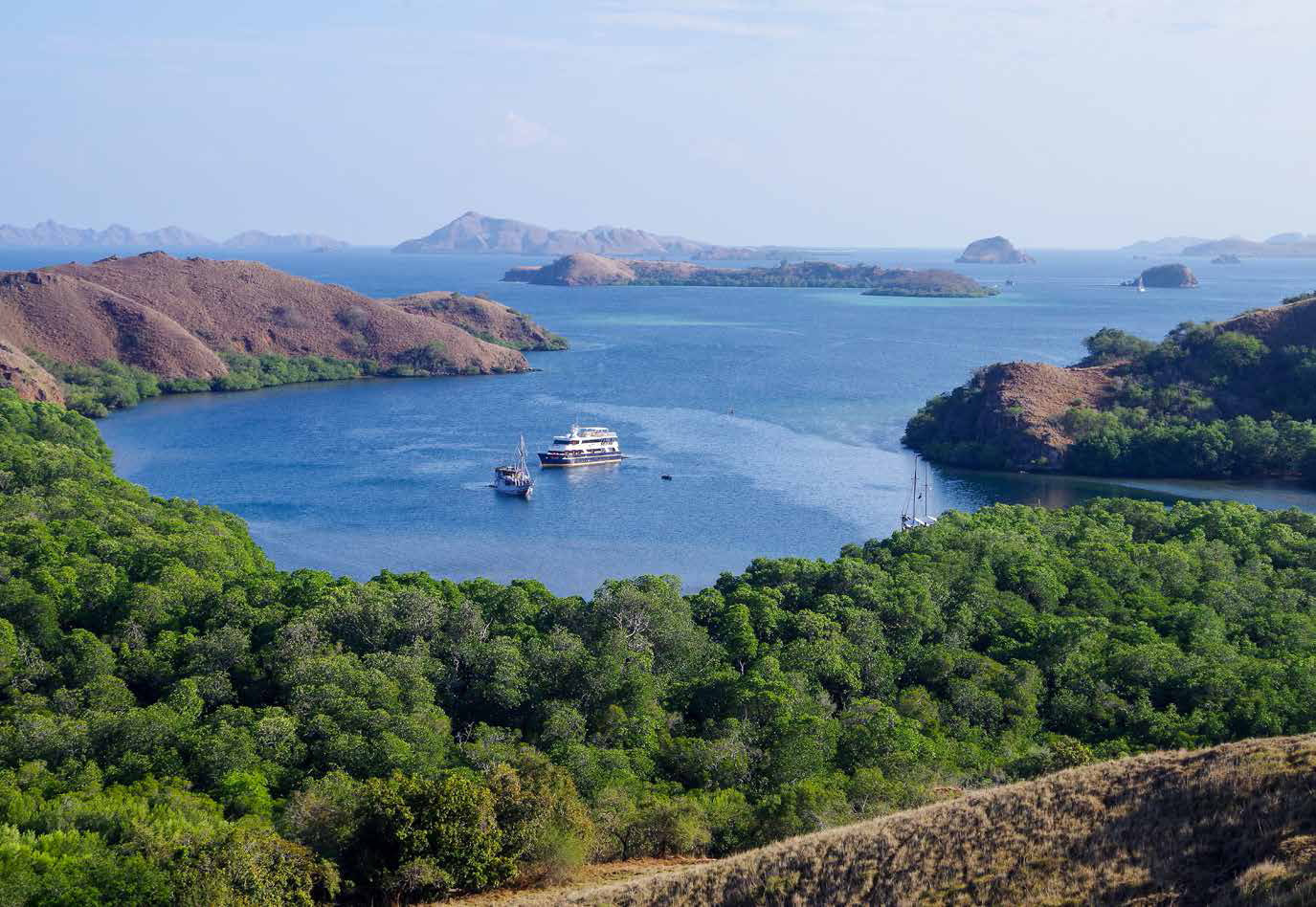 Komodo, the land of the dragon