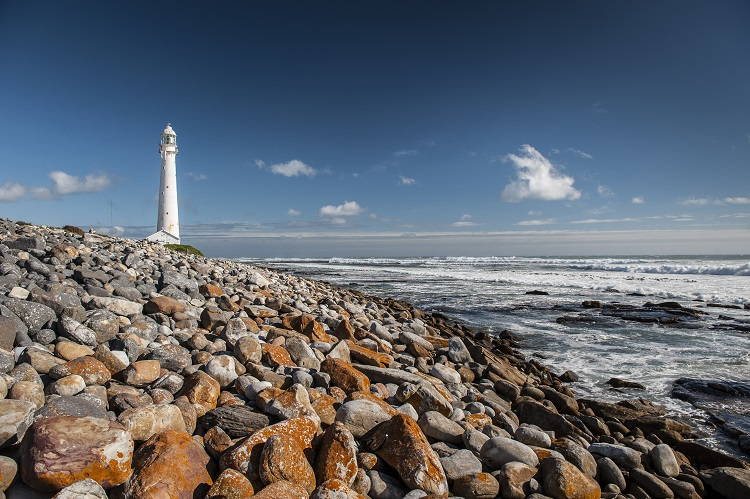 Cape Town: Nature's Masterpiece