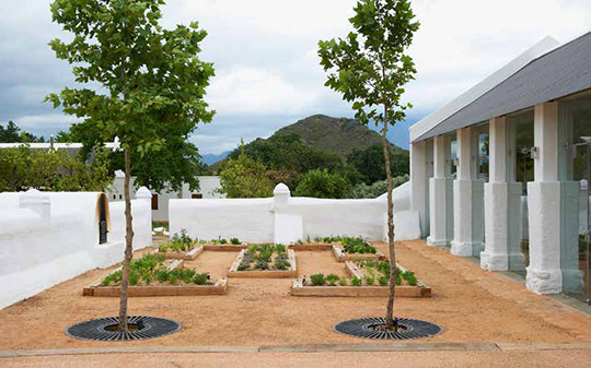Babylonstoren, wine by design more than just a wine estate
