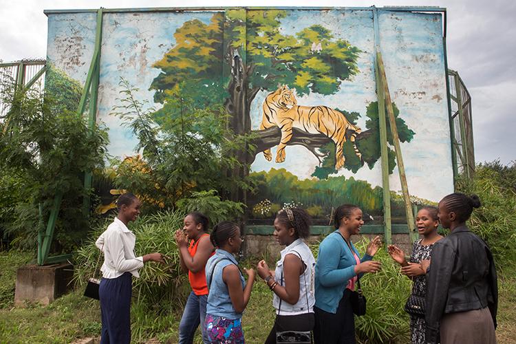 Lubumbashi's Zoo