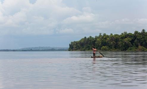 En République Démocratique du Congo, les mangroves, un éco-système à préserver