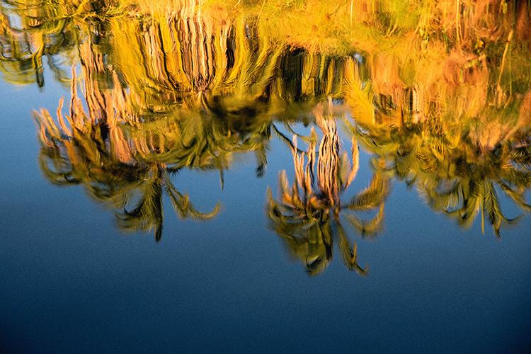 Reflets sur le fleuve Zambèze